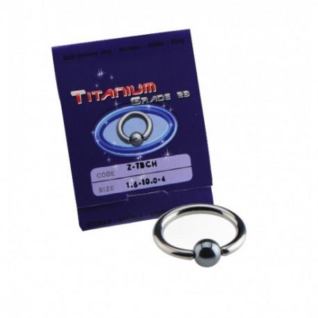 Sterilus titaninis auskaras žiedas